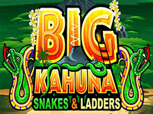 Big Kahuna Snakes And Ladders в онлайн-казино Вулкан 24